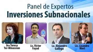 PANEL DE EXPERTOS: INVERSIONES SUBNACIONALES