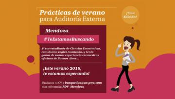 Prácticas de verano para Auditoría Externa 2017